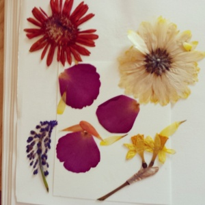The pressed flowers.