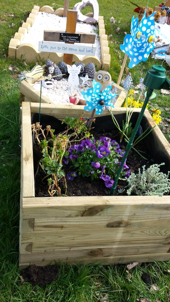 The square planter and burgeoning plants.